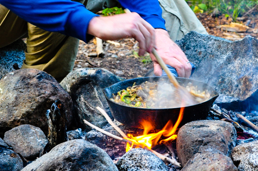 Cooking in the wild